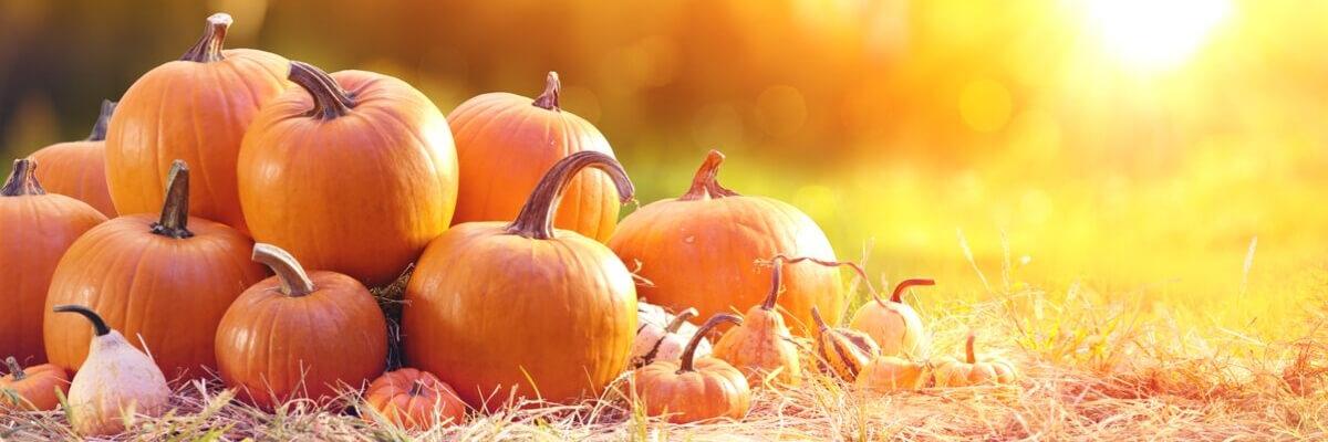 Halloween | Pinterest trends voor september: Wat ga je pinnen in september - ARCHANA.NL | pinterest september | september trends #pinterestmarketing #pinteresttrends